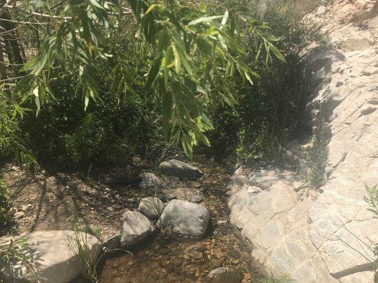Trail Canyon Falls Trail