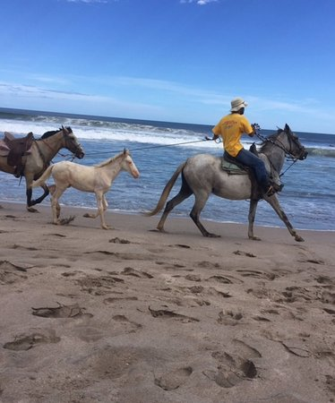 Rivas, Nicaragua: Often you will see people riding horses along the beach