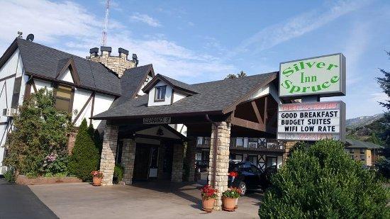 Silver Spruce Motel Photo