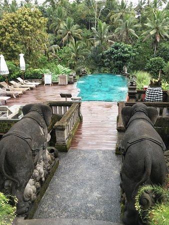 photo4 jpg - Picture of The Kayon Resort, Ubud - TripAdvisor