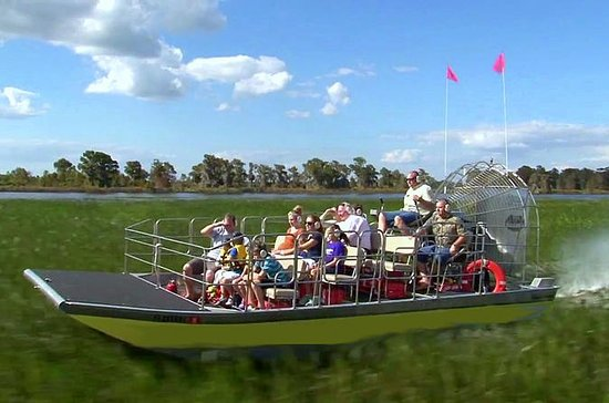 Florida Everglades Airboat Tour, Wild Florida from Orlando