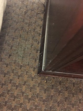 Drury Inn & Suites St. Louis Fairview Heights: photo6.jpg