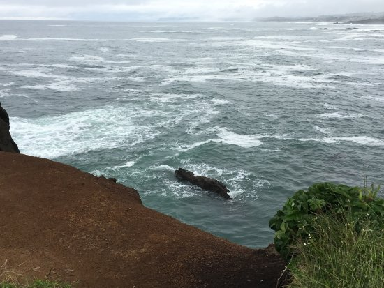 Depoe Bay, Oregón: Whale watching spot on the gorgeous OR coast!