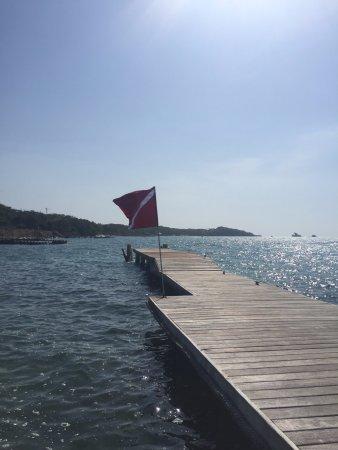 Diving Planet: Dive Dock
