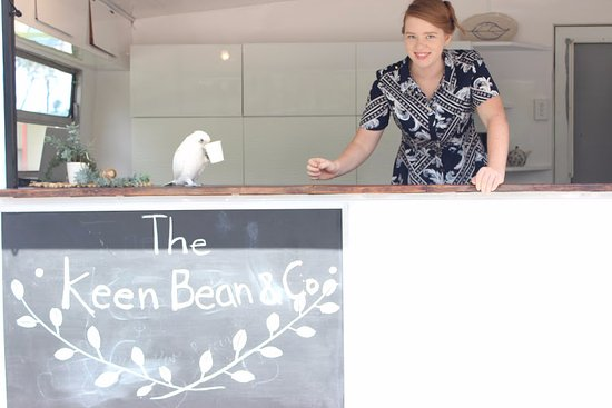 Medowie, Australien: The Keen Bean & Harry