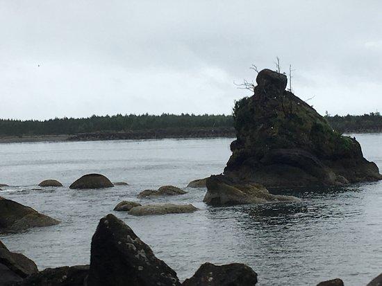 Garibaldi, OR: Rockaway Beach