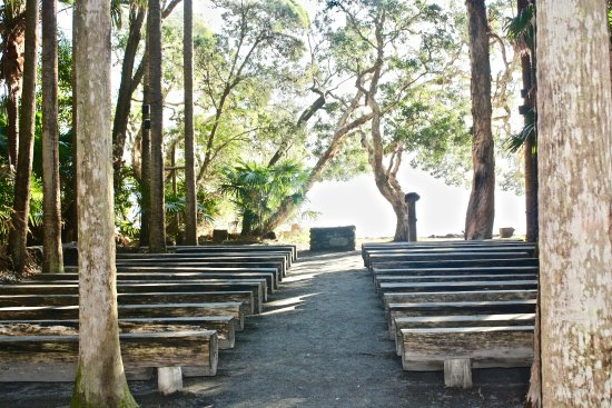 The Green Cathedral: The church