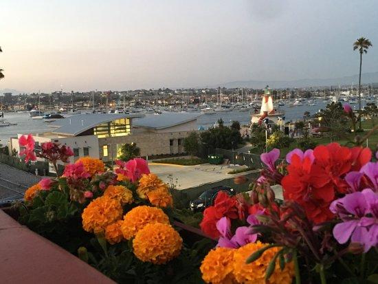 Bay Shores Peninsula Hotel: photo8.jpg