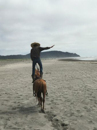 Long Beach, WA: West Coast Horse Rides is the BEST! 360-244-0602. You'll love the small guided tours they provid