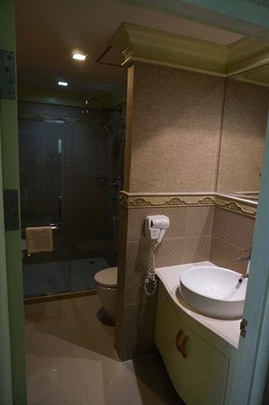 Kingston Suites: Shower booth