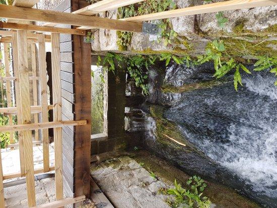 Le Moulin de Saint-Jean : Chambres et table d'hôtes en Touraine