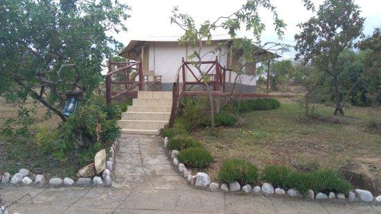 Elangata Olerai Luxury Tented Camp : Classic Tented Elangata Olerai Camp