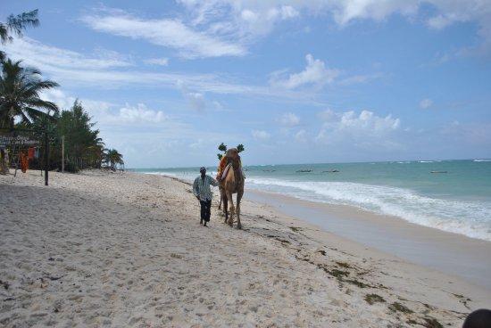 Bahari Dhow Beach Villas: Hotel beach front