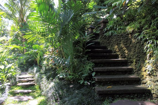 Mas, Indonezja: One of the many pathways in the resort
