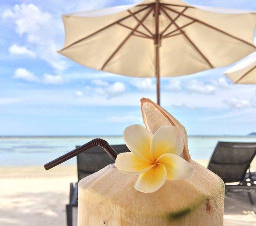 Dara Samui Beach Resort Reviews