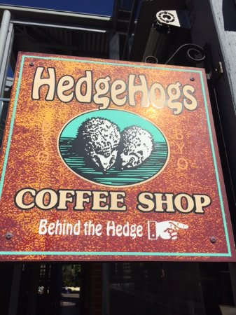 HedgeHogs Coffee Shop: Run Away as fast as you Can