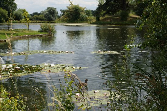 Spetchley Park Gardens: Lovely picnic view