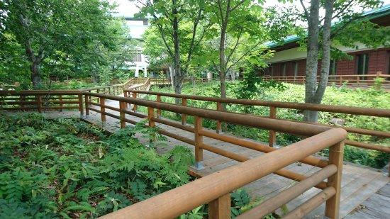 Nishimeya-mura, Japan: 白神山地ビジターセンター