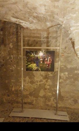 The amazing Medieval cellar.