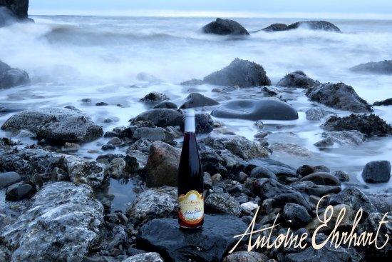 Wettolsheim, فرنسا: Vins et Crémants d'Alsace Antoine Ehrhart - Wettolsheim - L'Alsace au Québec
