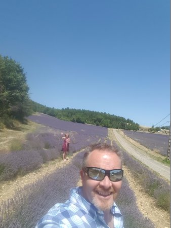 Experience Provence Tours : Touring the Lavender with EXPERIENCE PROVENCE
