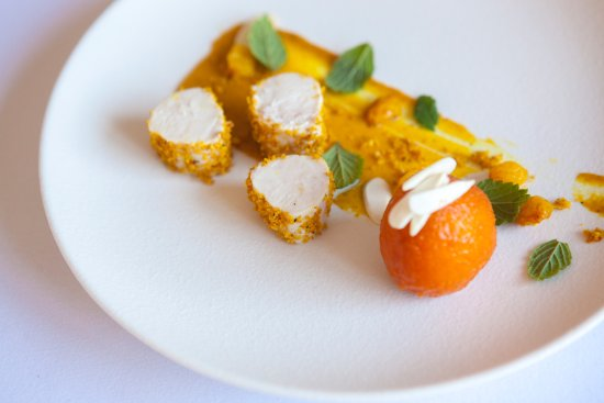Titchwell, UK: Coronation chicken, apricot