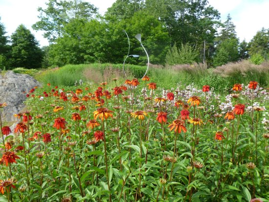 Boothbay, ME: Great lawn garden