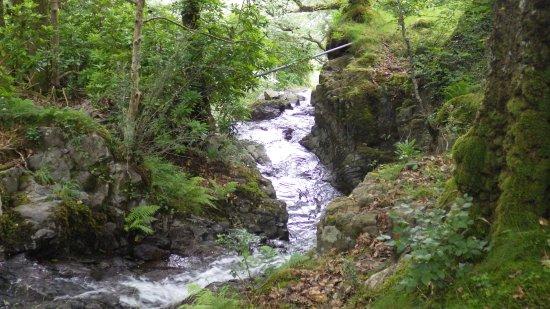 Borrowdale, UK : Trail behind the hostel