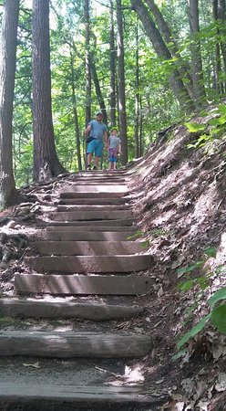 Robert Treman State Park: lots of stairs to climb
