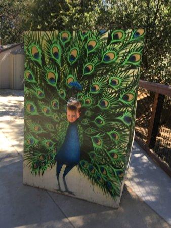 Folsom, Kalifornien: photo0.jpg