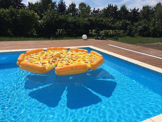 Gestüt Kaiserhof: Viele Aufblasbare Matratzen Wie Die Pizza, Ein Flamingo  Oder Ein Einhorn Runden