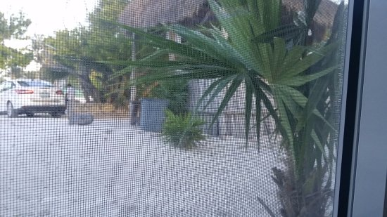 El Paraiso Tulum: View of the taxi station from our window.