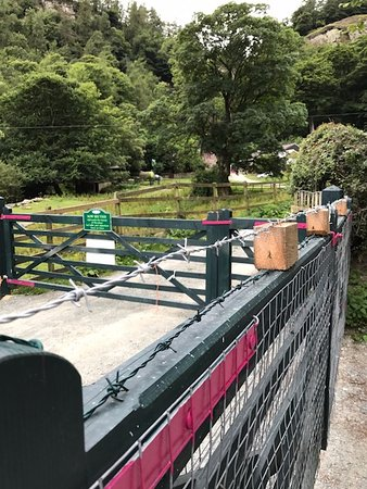 Llanrhaeadr ym Mochnant, UK: Barbed wire at campsite to keep you out