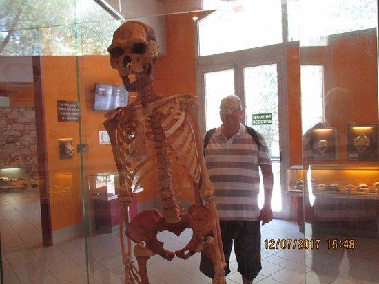 Museum of Prehistory Tautavel: ossements