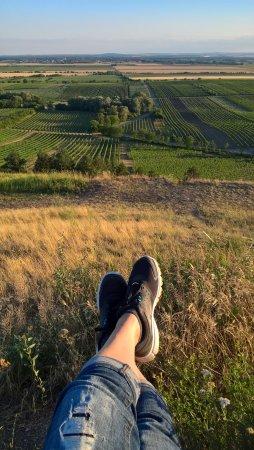 Velke Bilovice, Tsjechië: Great views over the local wine yards from the chapel Hradisko