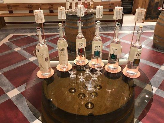 Poli Distillerie: Verkostung