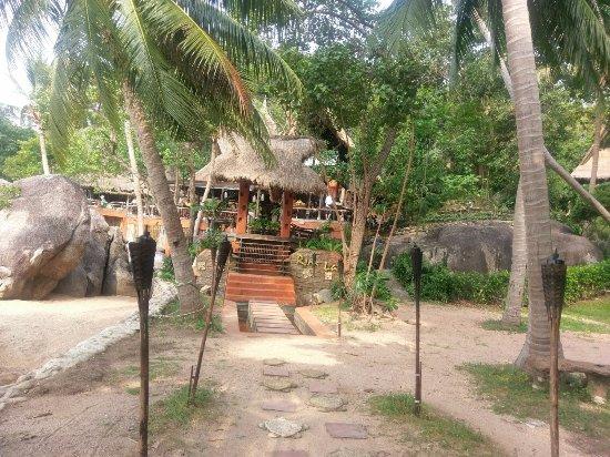 Koh Tao Cabana-billede