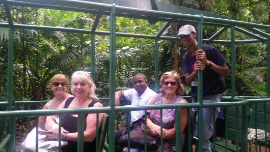 Vieux Fort, St. Lucia: Clients doing the areal tram
