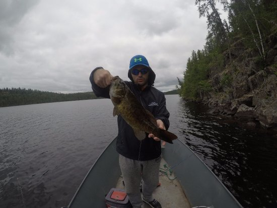 Elk Lake, Kanada: Small mouth bass on Bloom