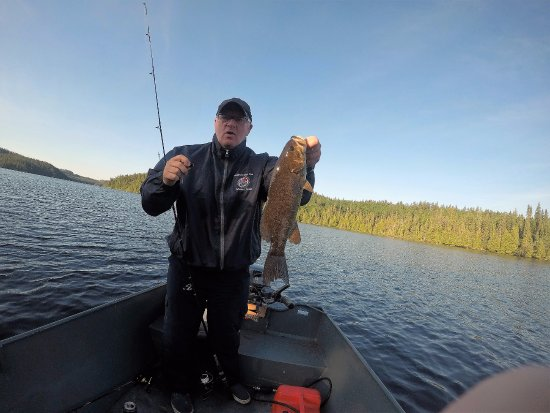Elk Lake, Kanada: Small mouth bass on Wigwam