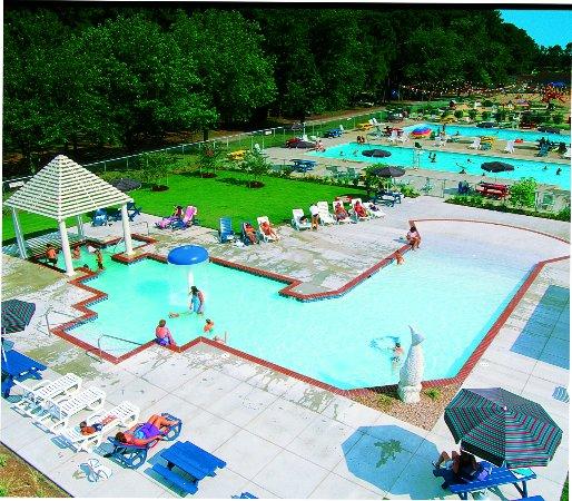 Dog Hotel Virginia Beach