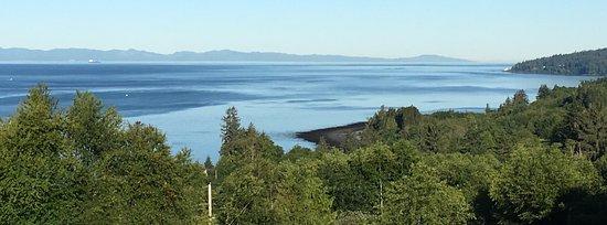 Straitview Ridge B&B: Just beautiful!!