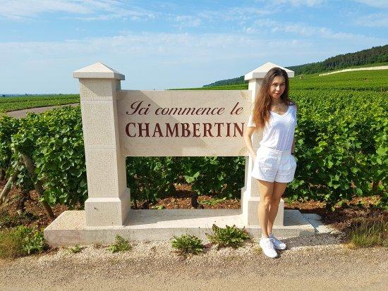 Gevrey-Chambertin, France : Domaine Varoilles