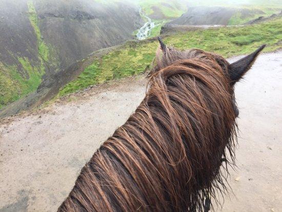 Eld Hestar Horseback Tours: photo0.jpg