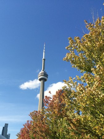 The Ritz-Carlton, Toronto: From the board walk
