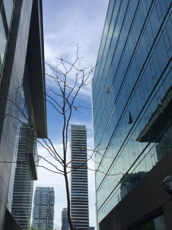 The Ritz-Carlton, Toronto: The side ally of the hotel