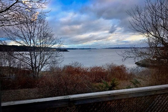 Bedford Basin view from Lady Anna's Tea Room.
