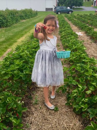 Ellsworth, MI: pick-your-own