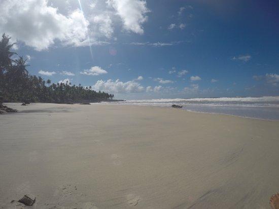Jeribucacu Beach: photo5.jpg