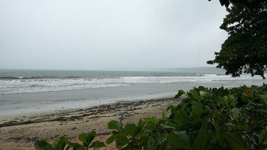 Cahuita, Costa Rica: IMG-20170710-WA0023_large.jpg
